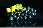 Vid de uva en ducha — Foto de Stock