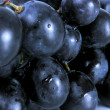 Blue grape — Stock Photo