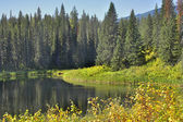 Lago silencioso. — Foto de Stock