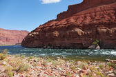 The Colorado River in the desert — ストック写真