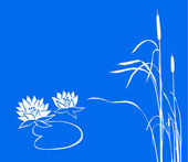 Water lily and reed on blue background. vector — Stock Vector