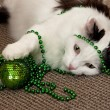 Stock Photo: Cat with New Year's decorations.