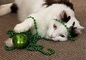 Katze mit einem silvester-dekoration. — Stockfoto