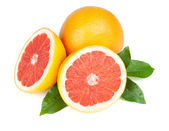 Fresh juicy grapefruits — Stock Photo