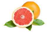 Fresh juicy grapefruit — Stock Photo