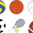 Set of the sport balls — Stock Vector