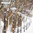 Lanterns in the winter park — Stock Photo