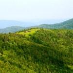 Green mountain view — Stock Photo