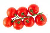 Fresh tomatoes on the white background — Stock Photo