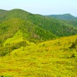 Stock Photo: Green mountain view