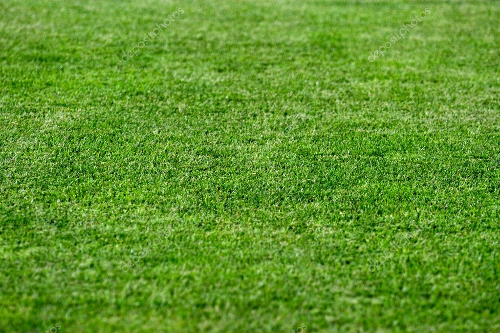 Green Grass Background Images Bright Green Grass Background