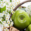 Green apple with flowers — Stock Photo