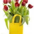 Fresh tulips - Foto Stock