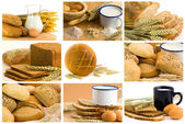 Bread collage — Stock Photo