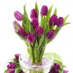 ������, ������: Fresh tulips