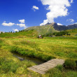 Stock Photo: Beautiful alpine landscape