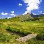 Beautiful alpine landscape — Stock Photo