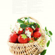 Royalty-Free Stock Photo: Basket of strawberries