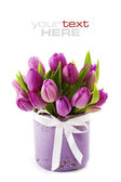 Pink tulips — Photo