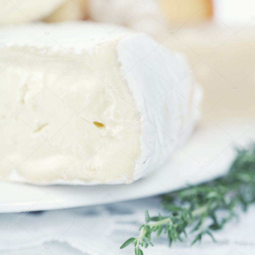 Close-up of brie cheese on a white plate — Stock Photo #3828415