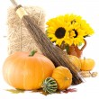 Pumpkins and sunflowers - Stock Photo