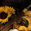 Autumn still life with pumpkins and flowers — Stock Photo #3913718