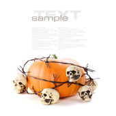 Happy Halloween — Stock fotografie