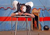 Circus acrobat with a plastic body executes his tricks — Stock Photo