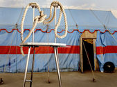 Simbolismo do circo. uma corda aepypodius num palco metal personificando p — Foto Stock