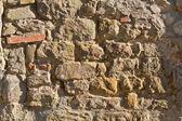 Stará zeď — Stock fotografie