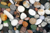 Stone pebbles — Stock Photo