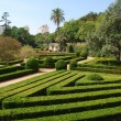 Enchanted Ajuda garden in Lisbon, Portugal — Stock Photo #3904848