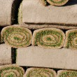 Stock Photo: Rolls of sod (background)
