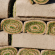 Rolls of sod (background) - Stock Photo