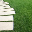 Serpentine pathway stones on a park lawn (concept) — Stock Photo