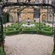 Stock Photo: Topiary knot garden