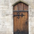 Stock Photo: Wooden door from medieval era