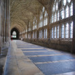 Stock Photo: Cloister in Gloucester Cathedral
