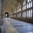 The Cloister in Gloucester Cathedral - Stock Photo