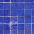 Blue azulejos - Stock Photo