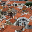 Stock Photo: Lisbon rooftops view