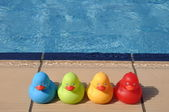 Gumowe kaczki — Zdjęcie stockowe