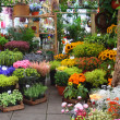 Flower market - Stock Photo