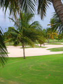 Resort golf course — Stock Photo
