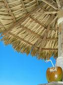 Beach coconut cocktail — Stock Photo