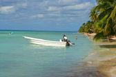 Caribbean shoreline — Stock Photo