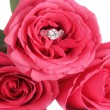 Foto Stock: Engagement ring and roses