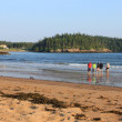 Along the shore at New River Beach — Stock Photo #3522320