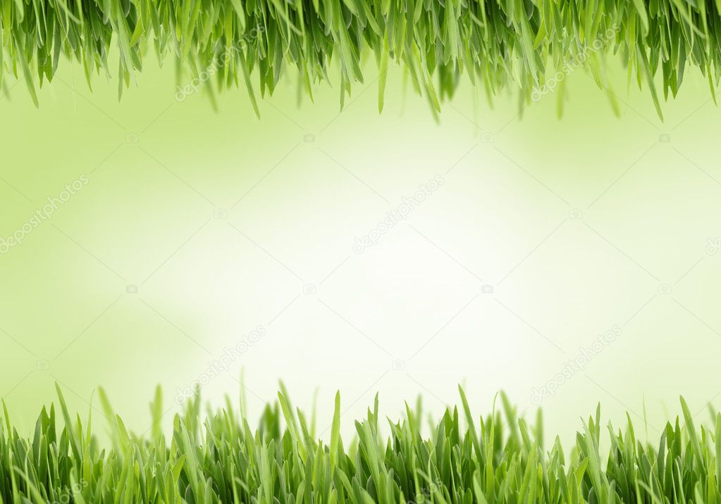 Green and yellow grass background great for scrapbooking with copy space — Stock Photo #3521205