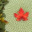 Stock Photo: Maple leaf and wicker fall background
